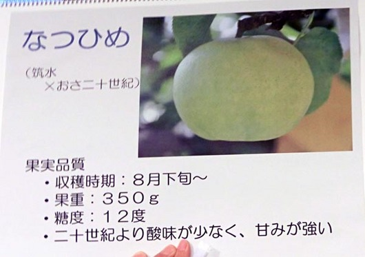 CIMG2146_s.jpg