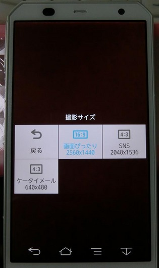 CIMG7599_s.jpg
